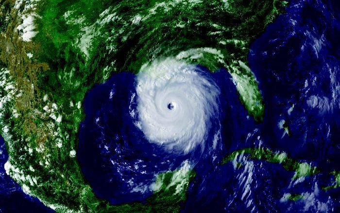 U.S. academic biomedical labs said unready for disasters