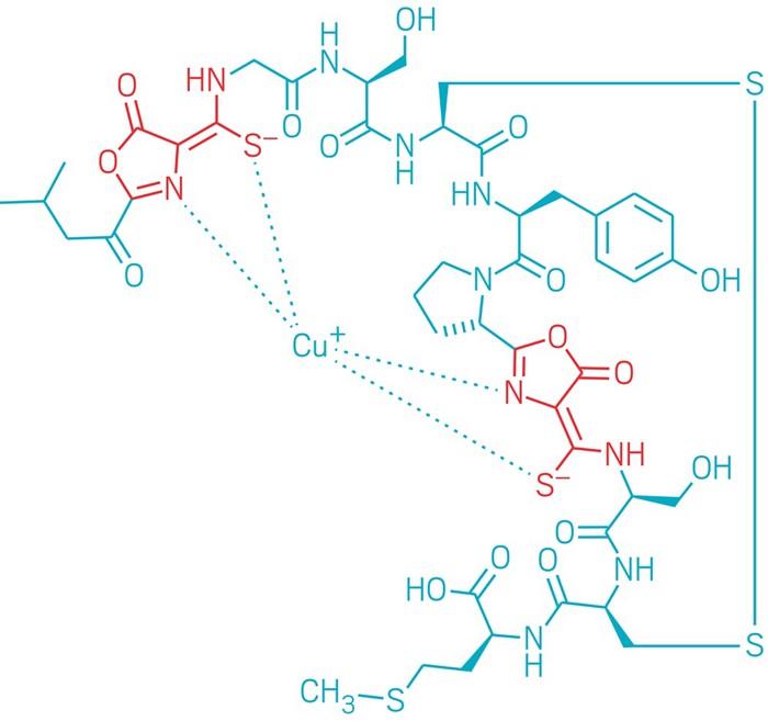 09613-scicon4-methanobactin.jpg