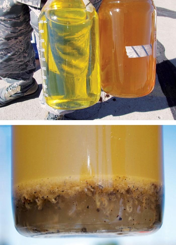 09615-reactions-biofuelCXD.jpg