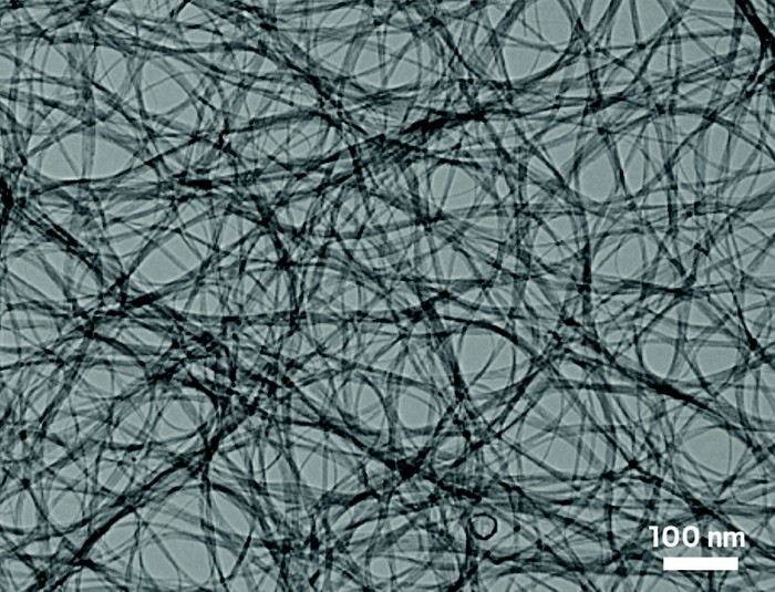 09617-buscon3-nanotubes.jpg