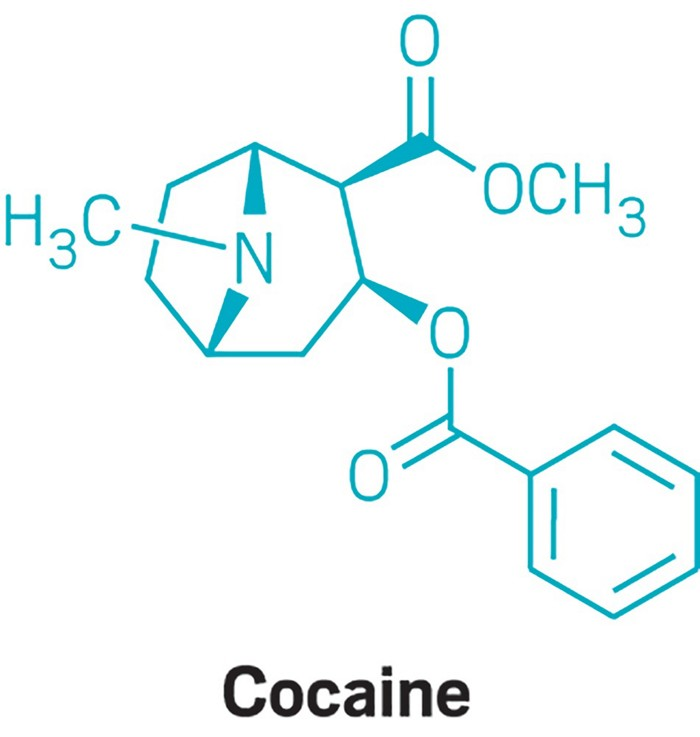 09618-cover-cocaine.jpg