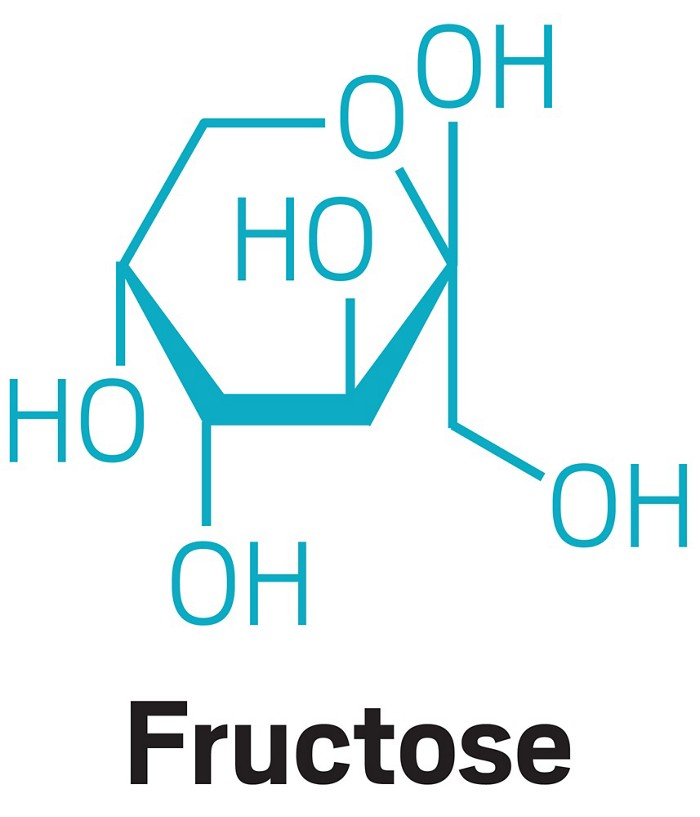 09622-feature3-fructose.jpg