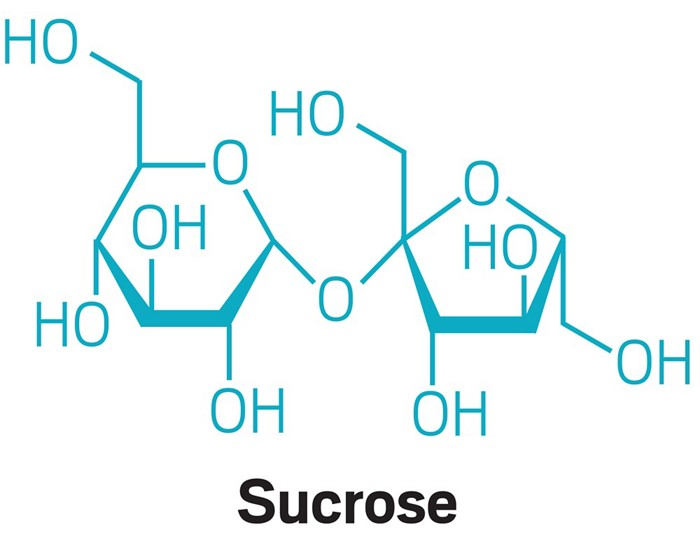 09622-feature3-sucrose.jpg