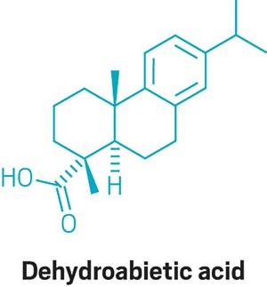09633-scicon1-dehydroabietic.jpg