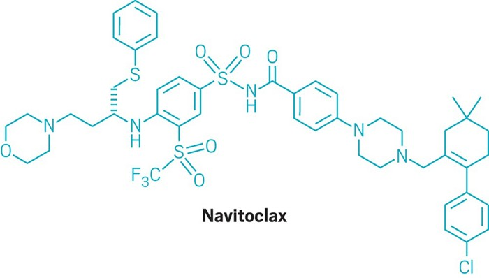 By killing cells that go quiet, cancer drug affects