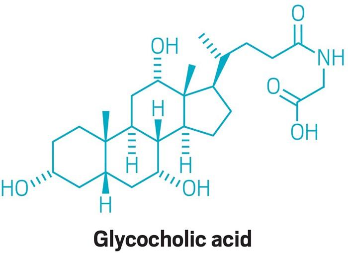 09638-scicon2-glycocholic.jpg