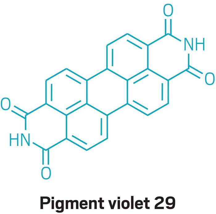09647-polcon1-pigment.jpg