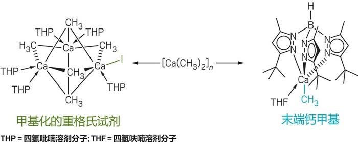 09649-scicon40-dimethylcalcium-cn.jpg