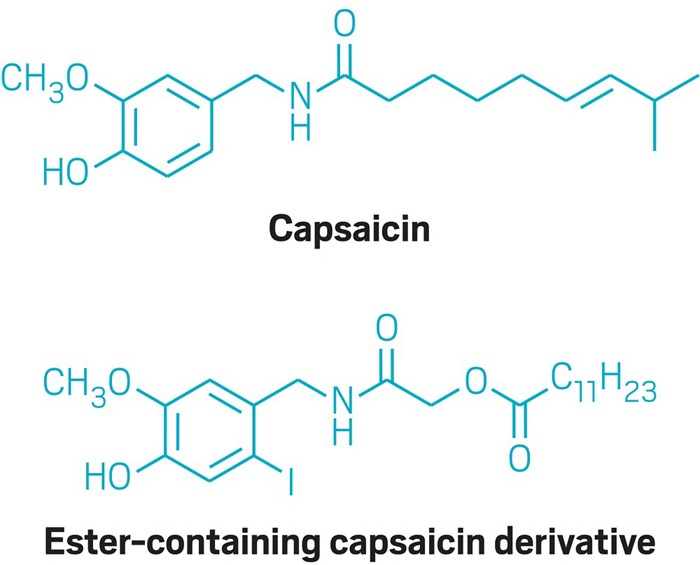 20180606lnp1-capsaicin.jpg