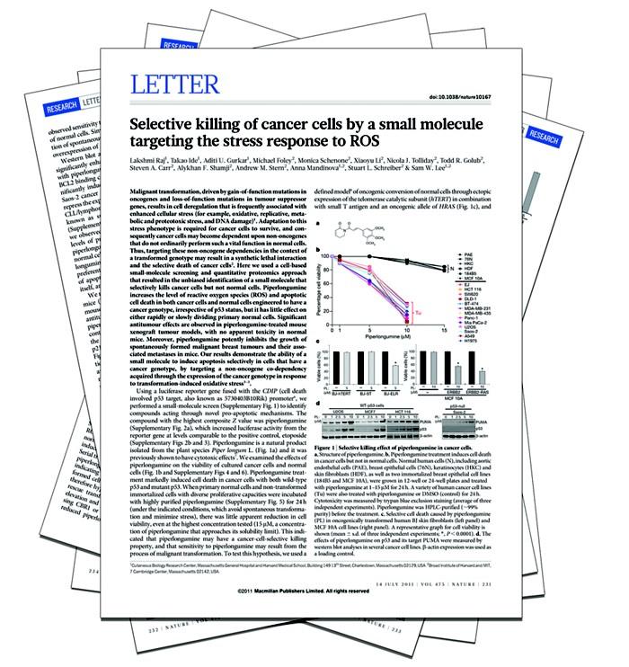 20180725lnp1-papers.jpg
