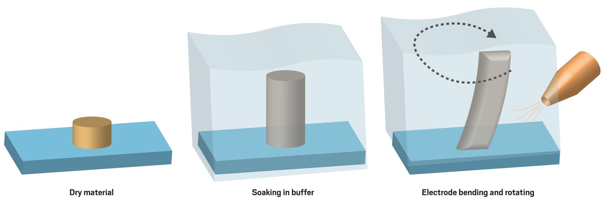 microelectrode2.jpg