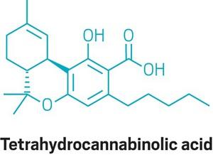 09717-buscon14-cannabinolic.jpg