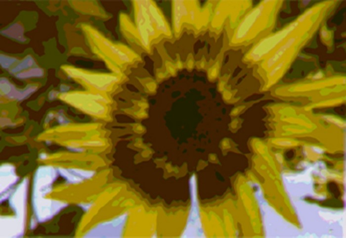 09718-scicon5-sunflower.jpg