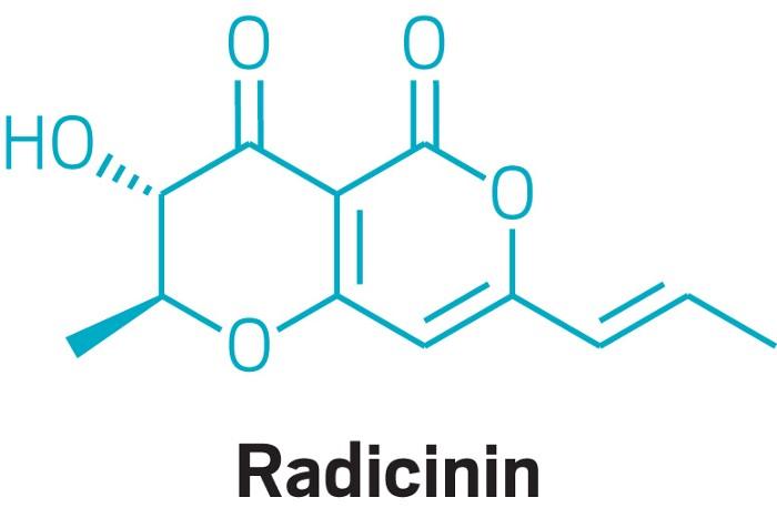 09723-cover-radicinin.jpg