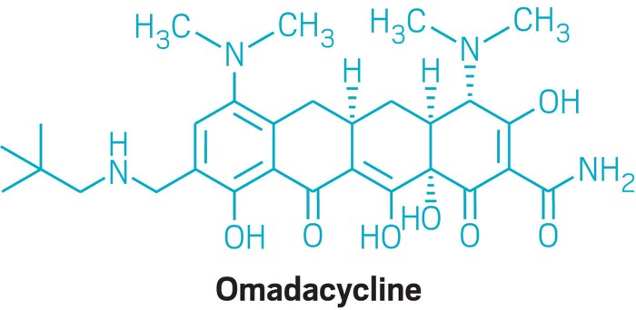 09725-cover4-omadacycline.jpg