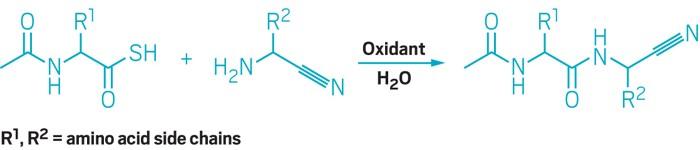 09729-scicon3-oxyscheme.jpg