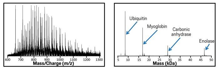 09736-feature3-chart.jpg