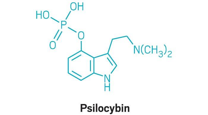 09739-scicon9-psilocybin.jpg