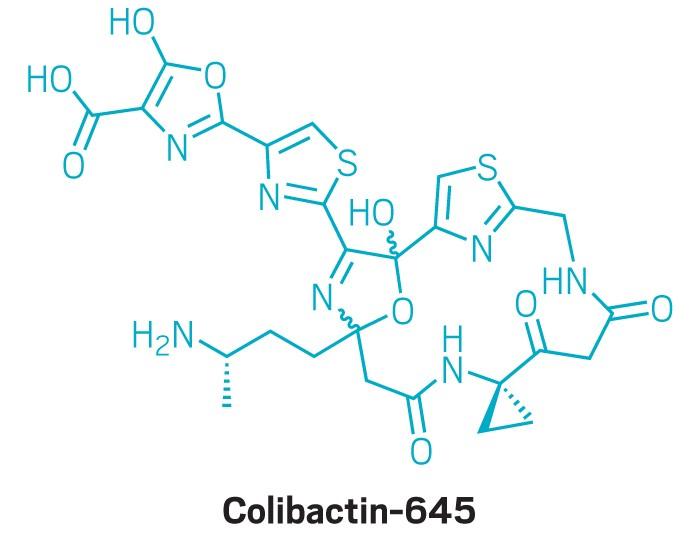 09740-feature2-coli645.jpg