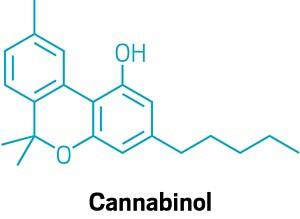 09742-buscon14-cannabinol.jpg