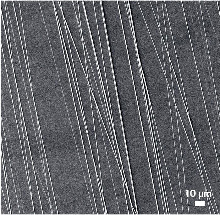 09743-scicon4-polymer.jpg