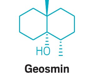 09748-scicon5-geosmin.jpg