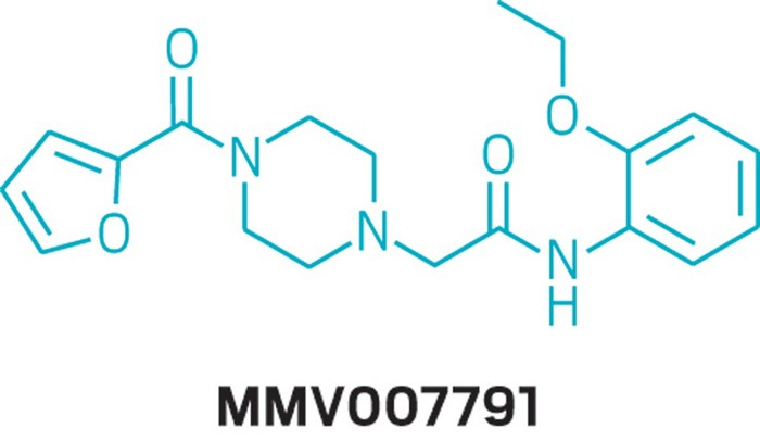 Open-source drug discovery takes aim at malaria and