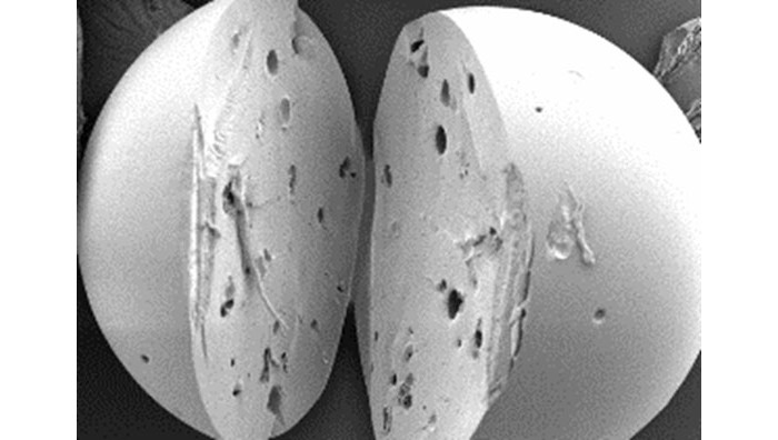 Polymer particles protect micronutrients to fortify food