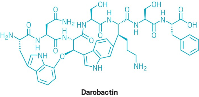 Image result for darobactin
