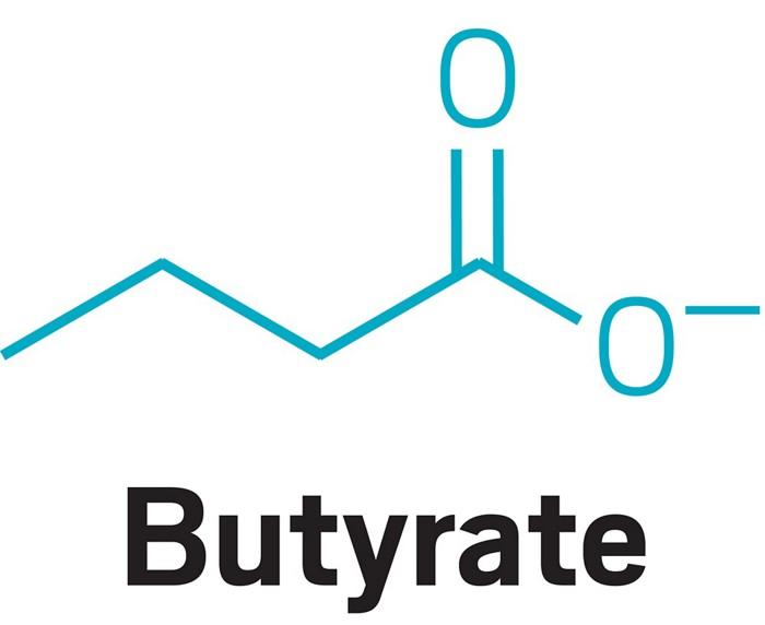 20180122lnp1-butyrate.jpg