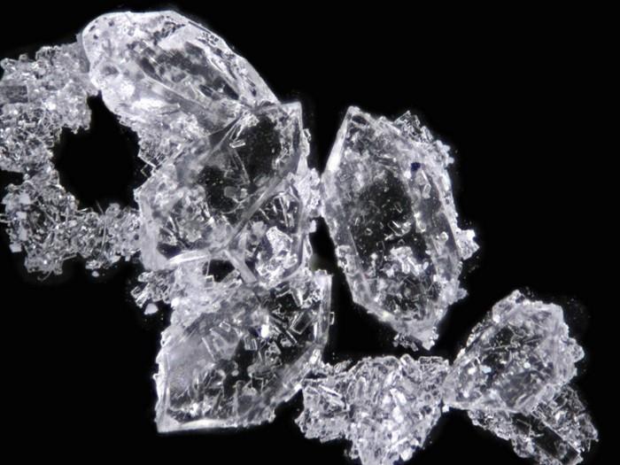 20190122lnp20-crystalclear.jpg