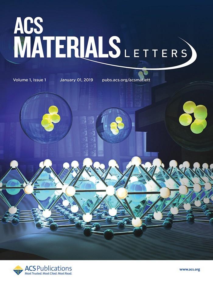 20190131lnp3-materialsletters.jpg
