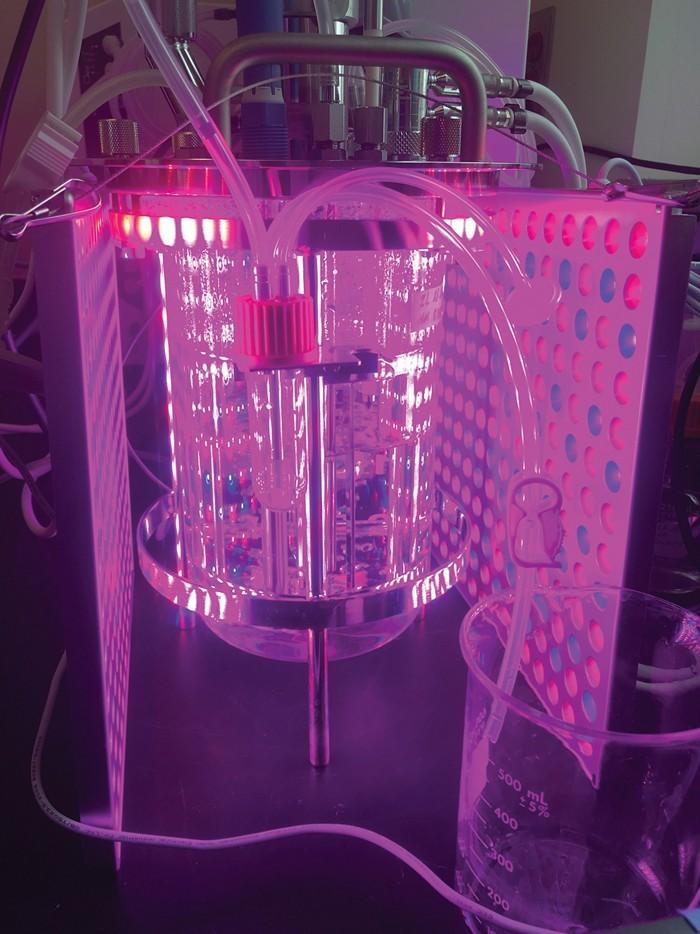 20190521lnp2-bioreactor.jpg
