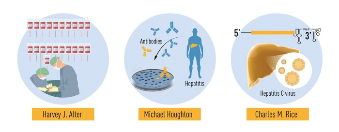 3 researchers awarded 2020 Nobel Prize in Physiology or Medicine for their discovery of Hepatitis C virus